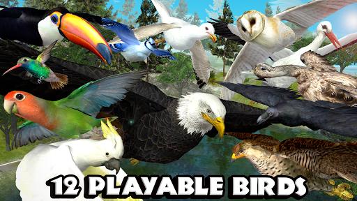 ultimate-bird-simulator-android-apk-download-droidapk-org-2