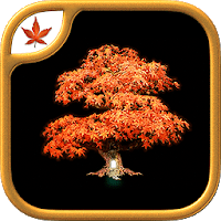 Fire Maple Games Collection Apk Download Free