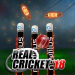 Real Cricket 18 Mod Apk Download (1)